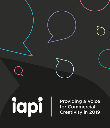 IAPI - What We Did in 2019